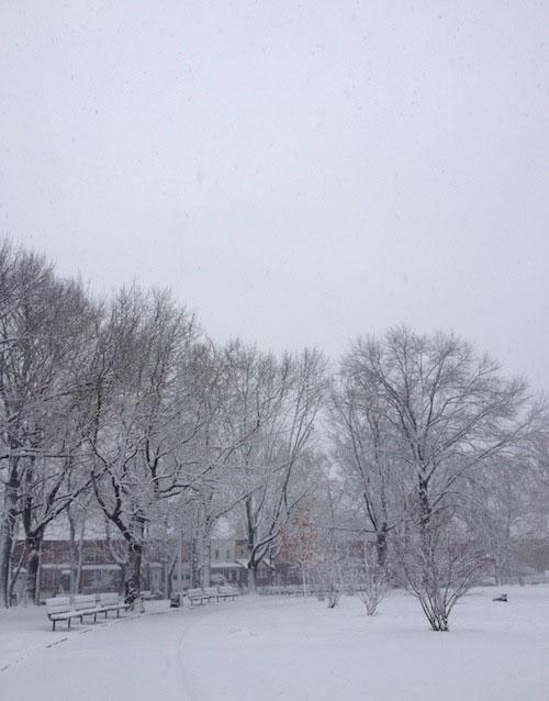 snow-encrusted-astoria-park-queens