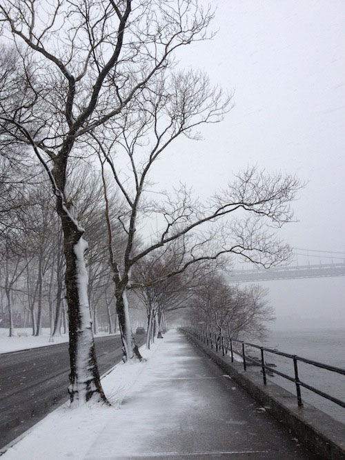 snowy-shore-blvd-astoria-queens