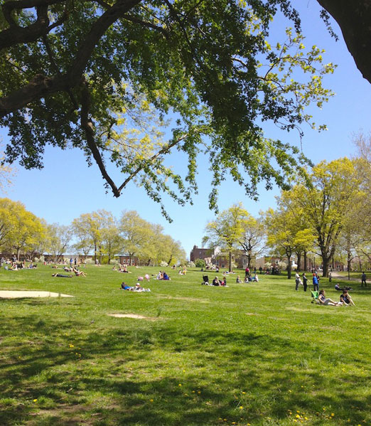 great-lawn-astoria-park-queens