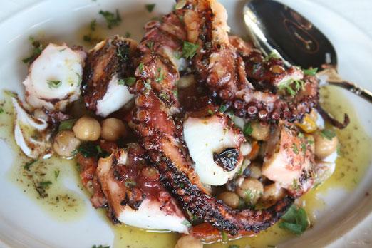 octopus-mp-tavena-astoria-queens