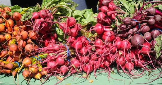 socrates-greenmarket-j-glebocki-farm-beets-and-carrots-astoria-queens