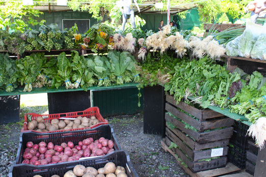 socrates-greenmarket-j-glebocki farm-greens-potatoes-astoria-queens