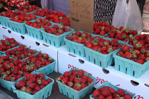 socrates-greenmarket-red-jacket-strawberries-astoria-queens