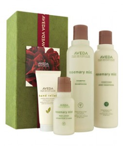 Natura Spa_Holiday Gift Guide_Aveda Mint Gift Set