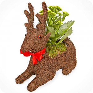 luludi living frames_Holiday Gift Guide_Reindeer