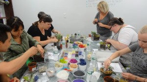 luludi_terrarium workshops
