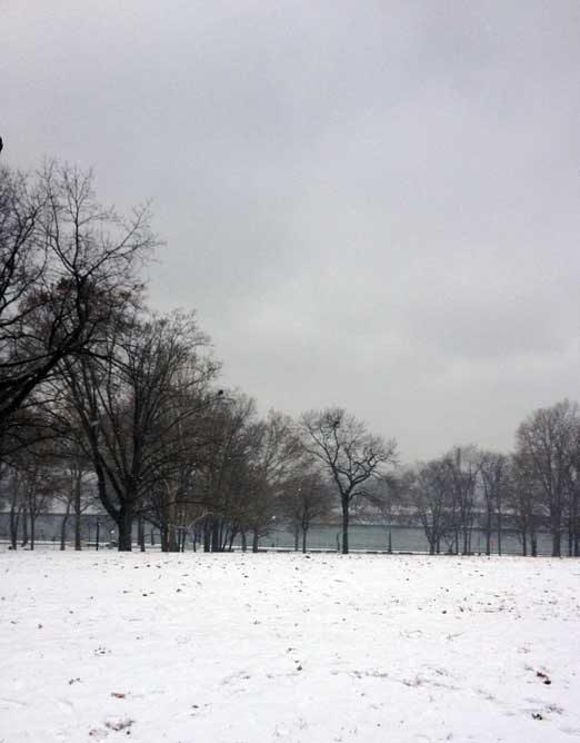 The Great Lawn of Astoria Park