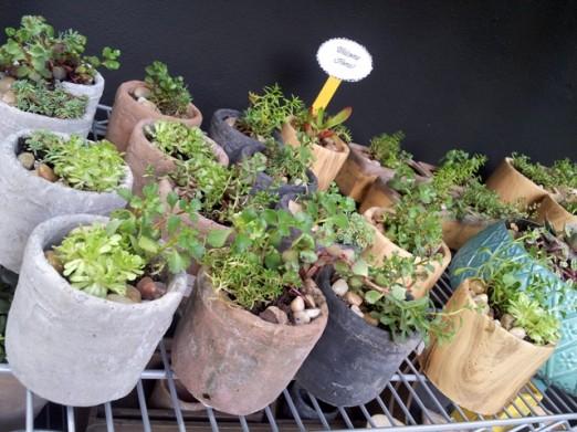 plants-lockwood-secret-garden