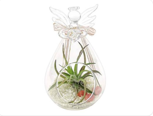 Angel Terrarium_Holiday Gift Guide
