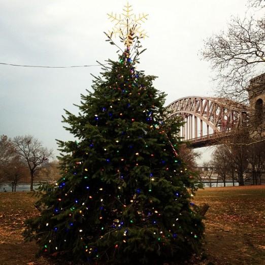 astoria-park-christmas-tree-2014-queens