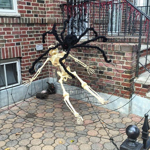 giant-spider-halloween-ditmars-astoria-queens