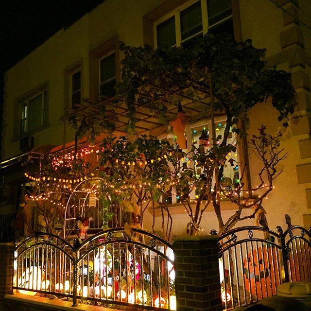 glowing-halloween-ditmars-astoria-queens