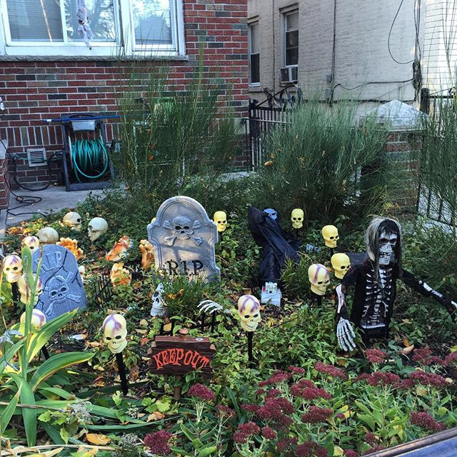 keep-out-lawn-decoration-halloween-ditmars-astoria-queens