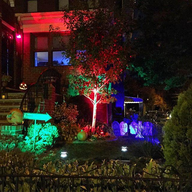 lit-up-graveyard-halloween-ditmars-astoria-queens