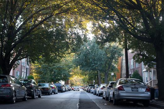 Ditmars_Residential_Neighborhood_in_Fall_of_2012