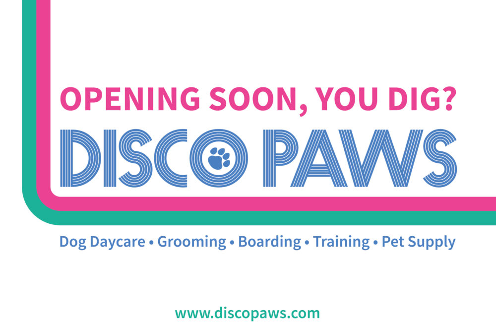 disco-paws-coming-soon-ditmars-astoria-queens
