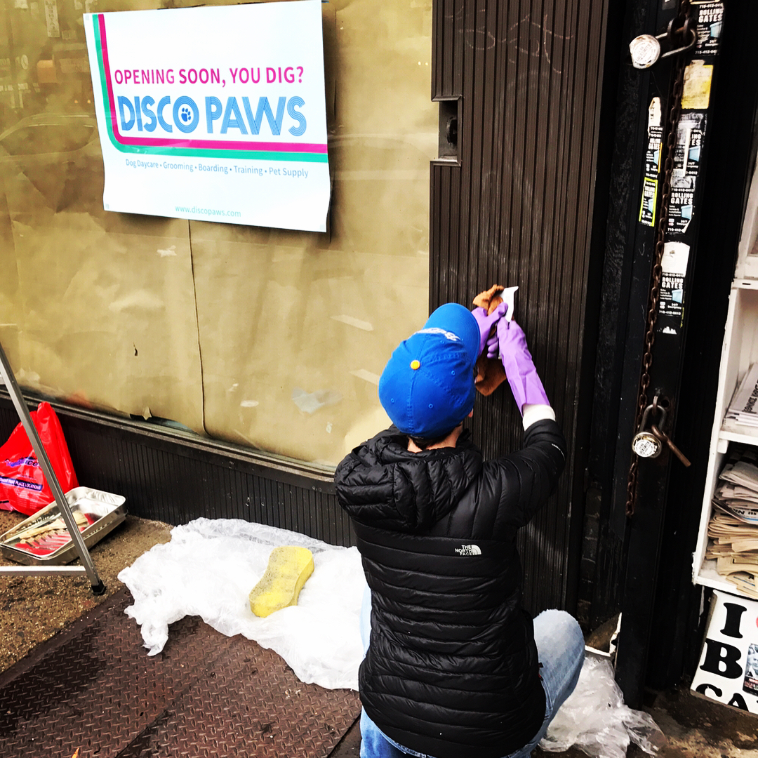 disco-paws-construction-ditmars-astoria-queens