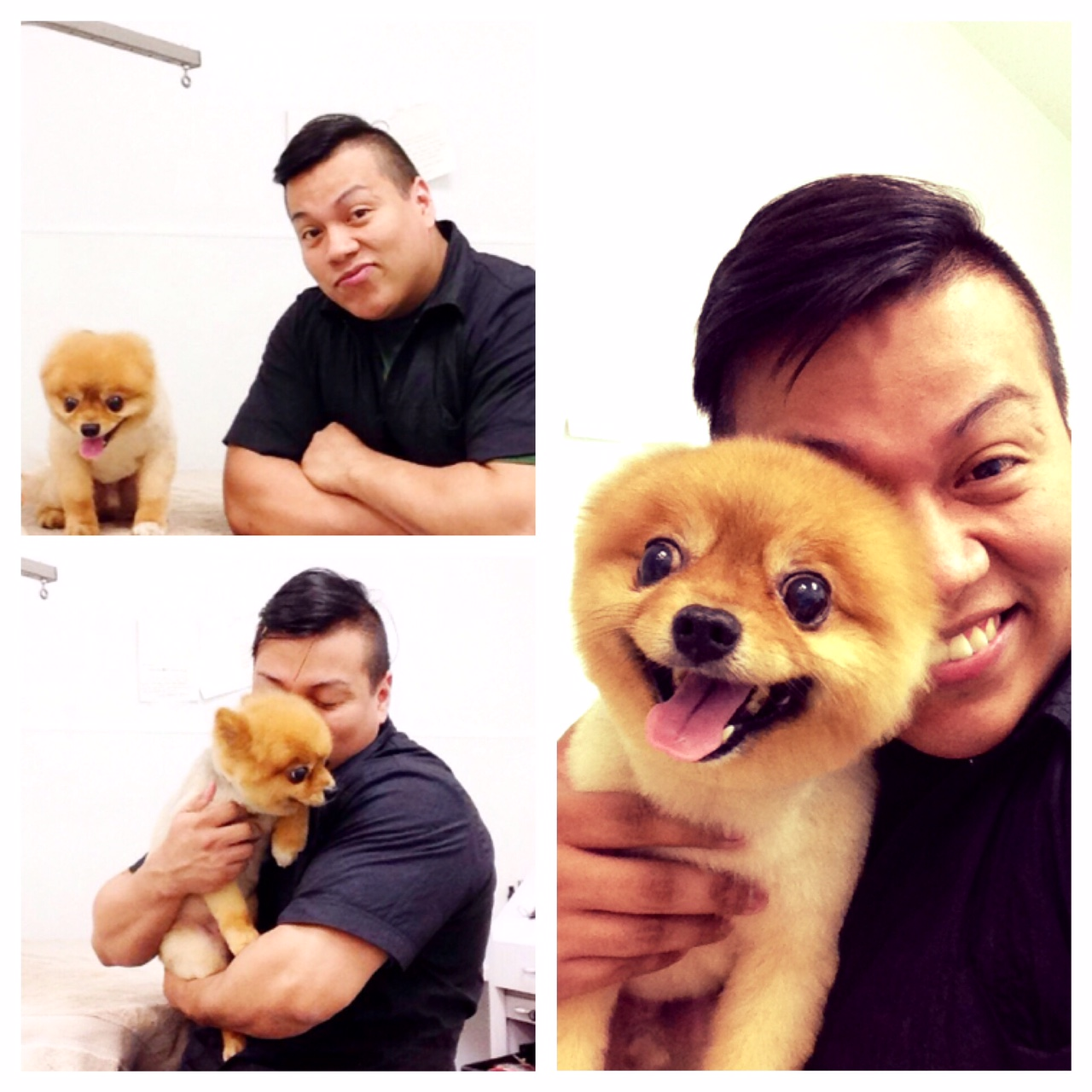 smiley-owner-collage-central-park-pet-spa