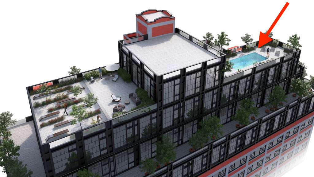 rooftop-pool-paper-factory-hotel-lic-long-island-city
