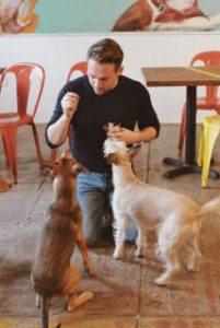Barista featuring Dogs
